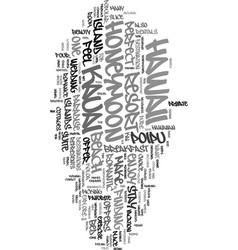your honeymoon in kauai text word cloud concept vector image