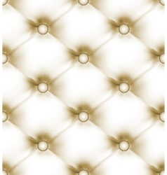 luxury buttoned leather vector image vector image