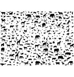 Animals mix vector