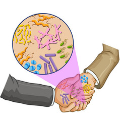 Bacteria when shaking hands vector