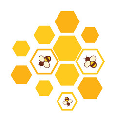 bees and honeycomb icon vector image