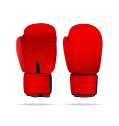 boxing gloves vector image