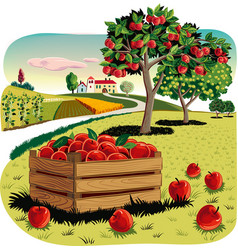 Deposit apples in an orchard landscape vector