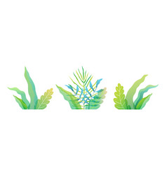 fresh spring or summer green florals leaves and vector image