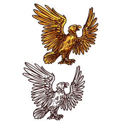 hawk or eagle heraldic golden bird vector image