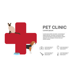 infographic veterinarian man with animal vector image