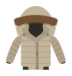 isolated winter jacket vector image