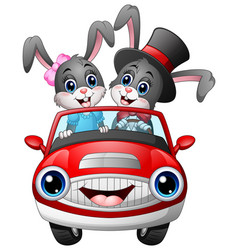 Romantic couples cartoon rabbit driving a car vector