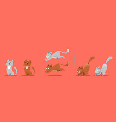 Set of cat poses kitten plays jumps vector