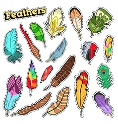 Tribal Feathers Decorative Elements for Scrapbook vector image