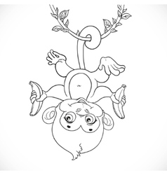 Cute baby monkey with banana hanging on the liana vector image