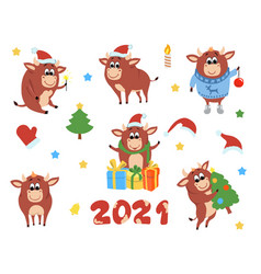 happy chinese new year cows and bulls vector image
