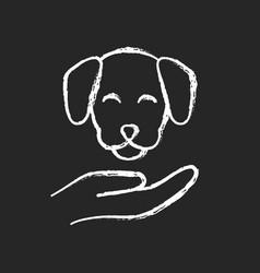 pet friendly chalk white icon on black background vector image