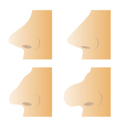 Set of different human nose vector