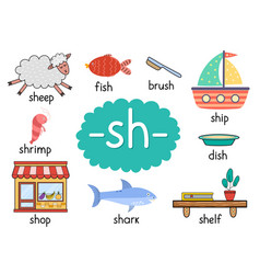 Sh digraph with words educational poster for kids vector
