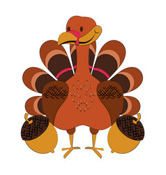 wild animals and elements thanksgiving day and vector image