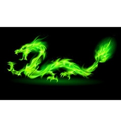 Dragon 2012 NT Green 01 vector image vector image