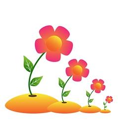 grow flower vector image vector image
