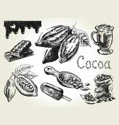 cocoa set engraving vector image