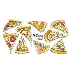 color assortment different slice pizza set ink vector image
