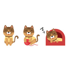 cute cat set on white background vector image