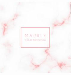 Elegant marble texture vector