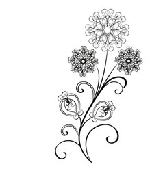 flowers flourishes vector image