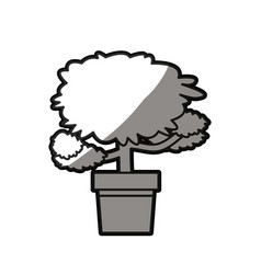 Pot tree decoration plant natural shadow line vector