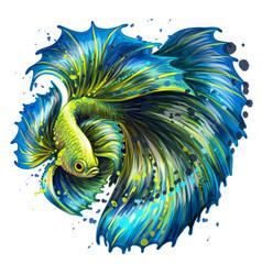 Tropical fish color graphic portrait vector