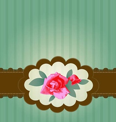 Vintage Roses with Lace vector image