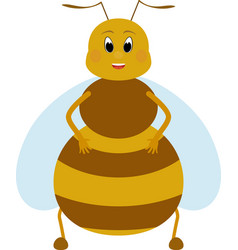 cartoon fat honey bee character vector image