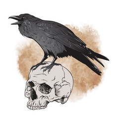 raven and skull on sepia background vector image vector image