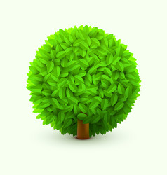 cute bush with green leaves realistic spring or vector image