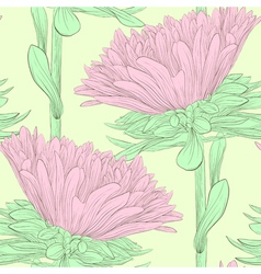 Beautiful pink flowers aster vector
