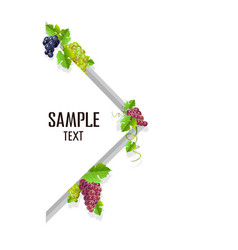 Card template with grapes vector