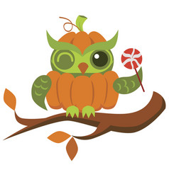 cartoon halloween orange pumpkin owl flat poster vector image