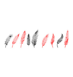 collection feather drawing engraving ink line vector image