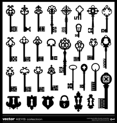 Keys silhouettes vector image