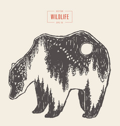 Silhouette wild bear forest inside drawn vector