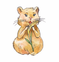 Watercolor hamster eating corn sketch art vector