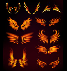 bird fire wings fantasy feather burning fly mystic vector image