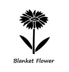 Blanket flower glyph icon gaillardia aristata vector