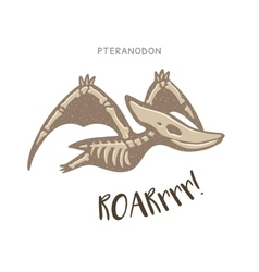 Cartoon pteranodon dinosaur fossil vector image