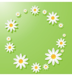chamomile green vector image
