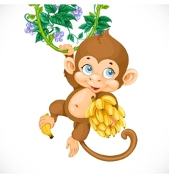 Cute baby monkey with banana isolated on a white vector
