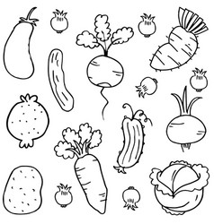 doodle of vegetable object collection vector image