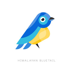 himalayan bluetail colorful bird vector image