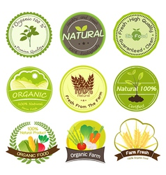 Organic and Natural Labels vector image