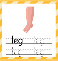 Tracing worksheet with word leg learning material vector