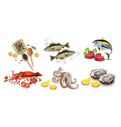 tuna fish caviar squid oysters and octopus vector image